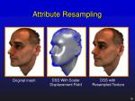 attribute resampling