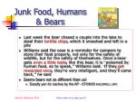 junk food humans bears
