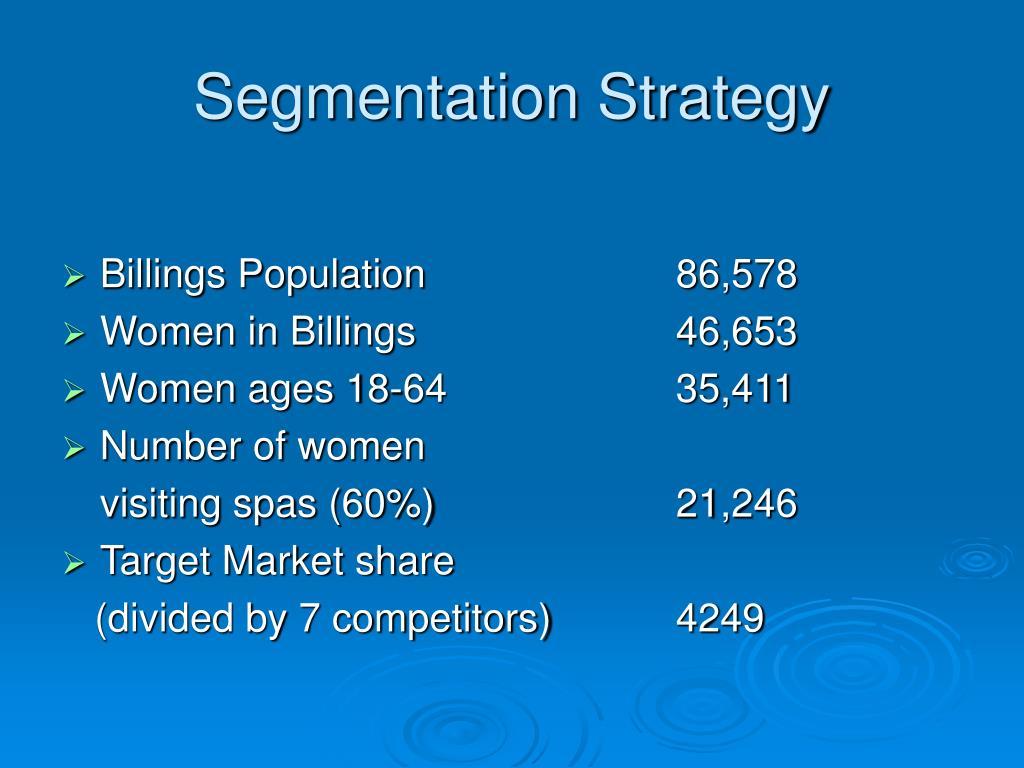 Segmentation Strategy