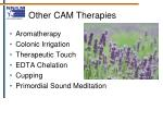 other cam therapies