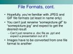 file formats cont