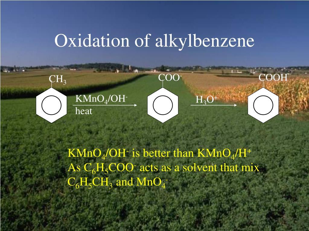 Oxidation of alkylbenzene