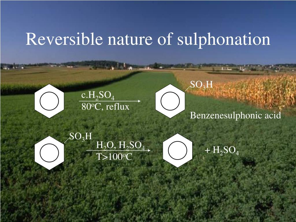 Reversible nature of sulphonation