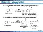 benzylic halogenation