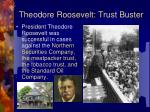 theodore roosevelt trust buster