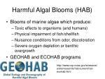 harmful algal blooms hab