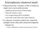 schizophrenia shattered mind