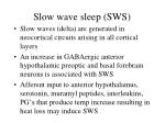 slow wave sleep sws14