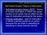 self determination theory of motivation