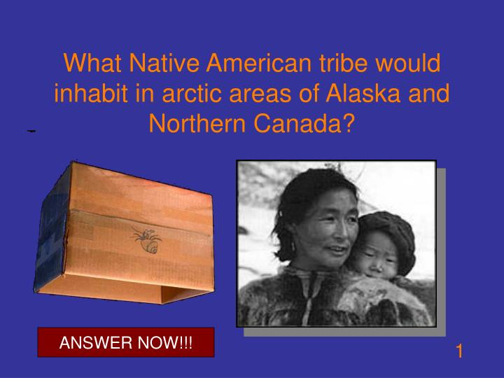 What native american tribe would inhabit in arctic areas of alaska and northern canada