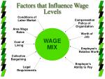factors that influence wage levels