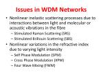 issues in wdm networks