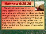 matthew 6 25 26
