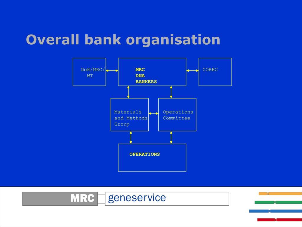 Overall bank organisation