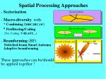 spatial processing approaches