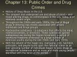 chapter 13 public order and drug crimes