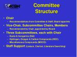 committee structure