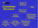 committee structure32
