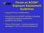 forum on acgih exposure assessment guidelines