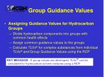 group guidance values