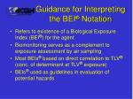 guidance for interpreting the bei notation
