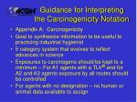 guidance for interpreting the carcinogenicity notation