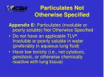 particulates not otherwise specified