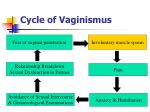 cycle of vaginismus