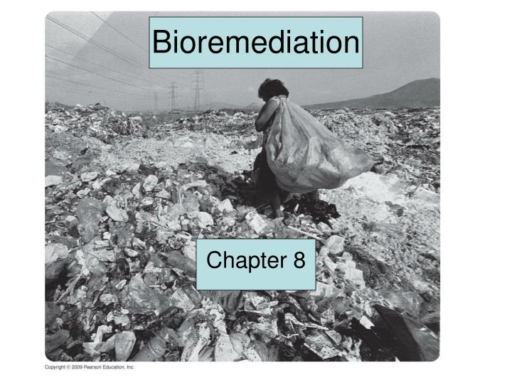 bioremediation n.