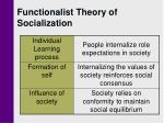 functionalist theory of socialization