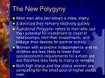 the new polygyny