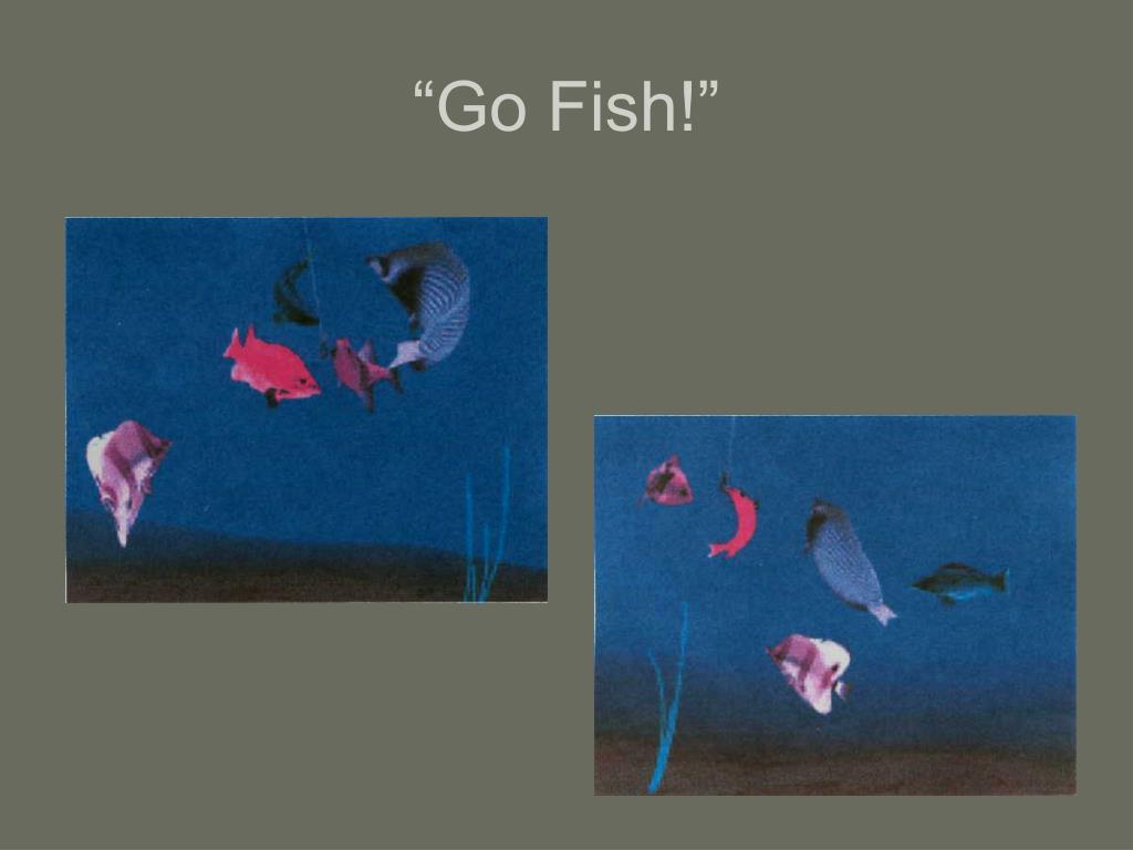 """Go Fish!"""