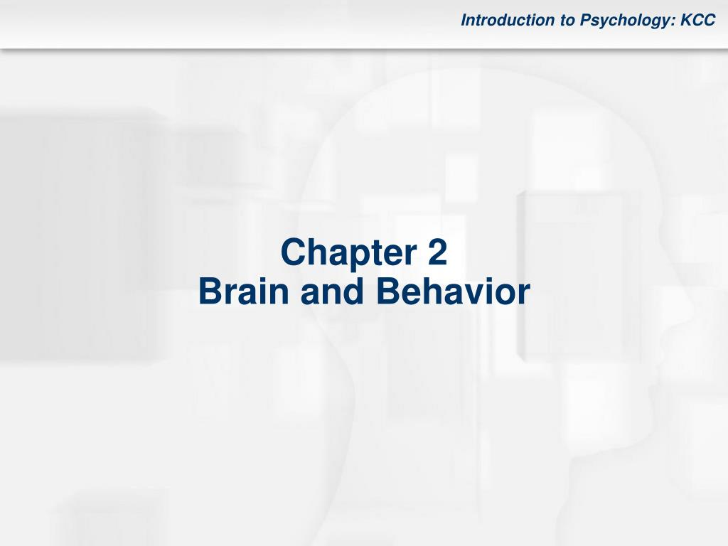 chapter 2 brain and behavior l.