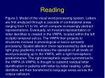 reading20