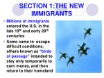 section 1 the new immigrants