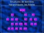 structures de donn es hi rarchiques les arbres