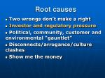 root causes10