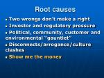 root causes13