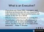 what is an executive
