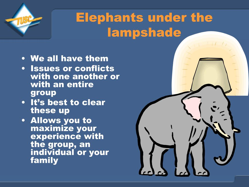 Elephants under the lampshade