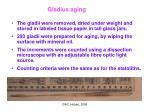 gladius aging