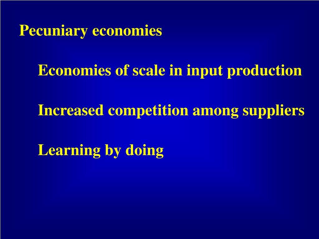 Pecuniary economies