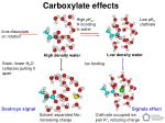 carboxylate effects40
