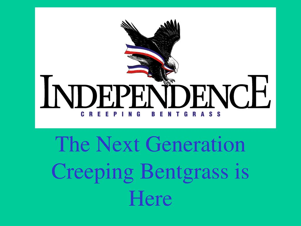 the next generation creeping bentgrass is here l.