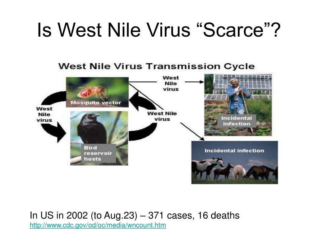 "Is West Nile Virus ""Scarce""?"