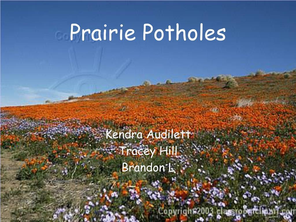 prairie potholes l.