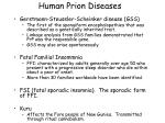 human prion diseases5