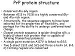prp protein structure17