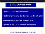 strategic thrusts