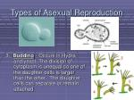 types of asexual reproduction7